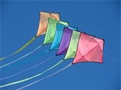 'Kids & Kites' event set for families of special needs children