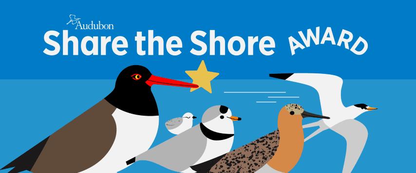 Share the Shore Award Logo (Small)